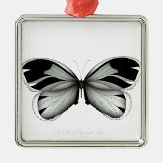 Ornement Carré Argenté Petit papillon de sauge de Richmond
