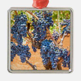 Ornement Carré Argenté Plante de raisin avec les groupes grapes.JPG bleu