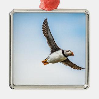 Ornement Carré Argenté Plume de mouche de faune de vol de mer d'oiseau de