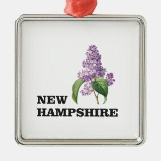 Ornement Carré Argenté plus du New Hampshire