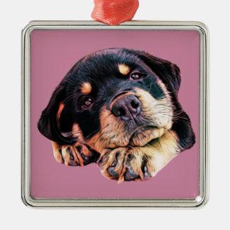 Ornement Carré Argenté Race allemande canine de chien de Rott d'amour de