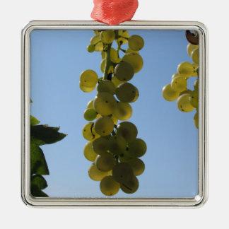 Ornement Carré Argenté Raisins blancs sur la vigne contre le ciel bleu