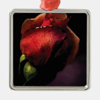 Ornement Carré Argenté rose pourpre violet black