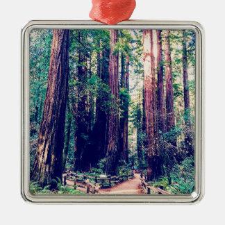 Ornement Carré Argenté Séquoias de Californie