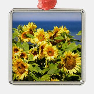 Ornement Carré Argenté Sort de tournesol coloré en fleur