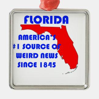 Ornement Carré Argenté Source de la Floride #1 pour de nouvelles étranges