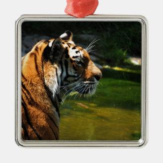 Ornement Carré Argenté Tigre