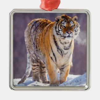 Ornement Carré Argenté Tigre sibérien dans la neige, Chine