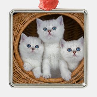 Ornement Carré Argenté Trois chatons blancs en roseau basket.JPG