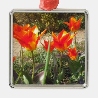 Ornement Carré Argenté Tulipes rouges et jaunes