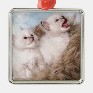 Ornement Carré Argenté two kittens meow