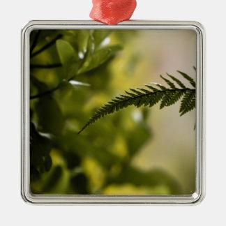 Ornement Carré Argenté Vert sauvage de nature