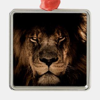 Ornement Carré Argenté yeux africains de fin de crinière de lion