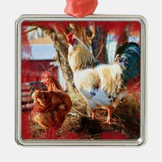 Ornement carré de prime avec la poule et le coq