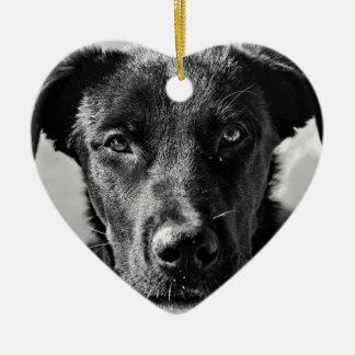 Ornement Cœur En Céramique Animal familier canin de chien