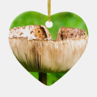 Ornement Cœur En Céramique Champignon de Brown dans grass.JPG vert