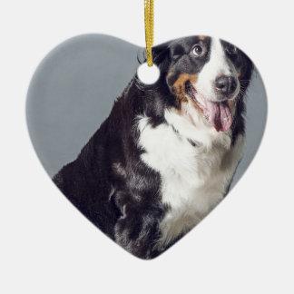 Ornement Cœur En Céramique chien