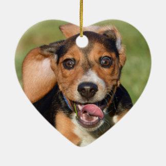 Ornement Cœur En Céramique Chiot fou de beagle en forme de coeur