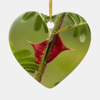 Ornement Cœur En Céramique Épines de Rosa omeiensis.