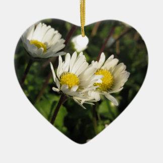 Ornement Cœur En Céramique Fleurs de marguerite blanche sur l'arrière - plan
