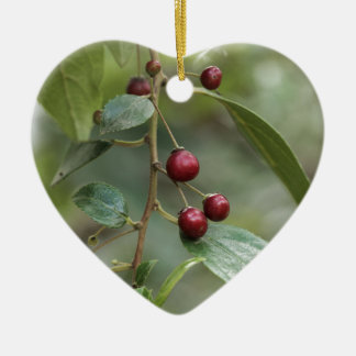 Ornement Cœur En Céramique Fruits d'un nerprun brillant de feuille