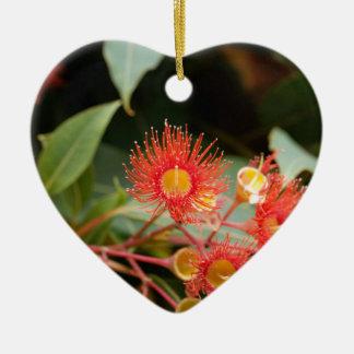 Ornement Cœur En Céramique Gomme fleurissante rouge (ficifolia de Corymbia)
