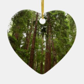 Ornement Cœur En Céramique Jusqu'aux séquoias au monument national en bois de