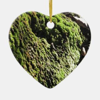 Ornement Cœur En Céramique La mousse verte dans le détail de nature de la