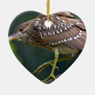 Ornement Cœur En Céramique Miscellaneous - Black-Crowned Night Heron & Branch