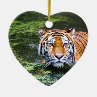 Ornement Cœur En Céramique Natation de tigre