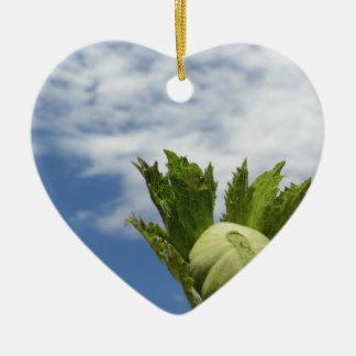 Ornement Cœur En Céramique Noisette verte fraîche simple contre le ciel bleu