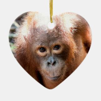 Ornement Cœur En Céramique Orphelin Kobe d'orang-outan de bébé