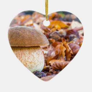 Ornement Cœur En Céramique Pain d'écureuil de champignon avec le feuille dans