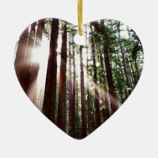 Ornement Cœur En Céramique Parc national de séquoias