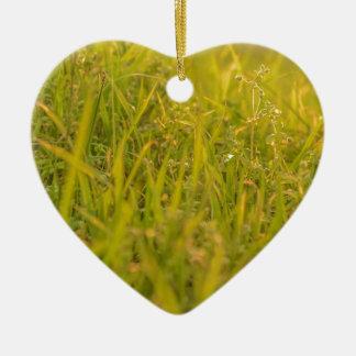 Ornement Cœur En Céramique Photo de détail d'herbe