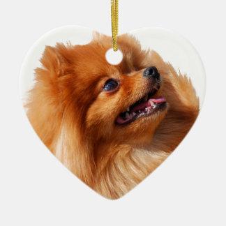 Ornement Cœur En Céramique Spitz de Pomeranian
