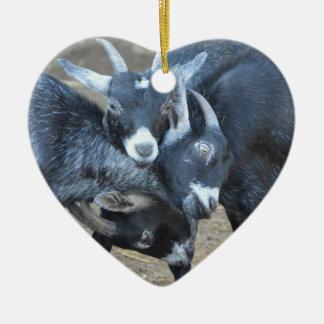 Ornement Cœur En Céramique Trois chèvres aboutant des têtes en forme de coeur