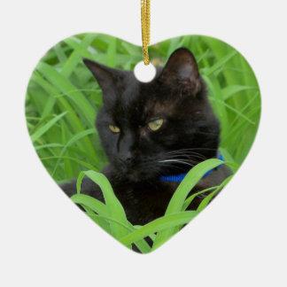 Ornement d'anniversaire de chat noir de Bombay