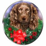 Ornement de cadeaux de Noël d'épagneul de Boykin Photo En Relief