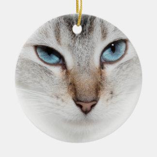 ORNEMENT DE CAT SIAMOIS