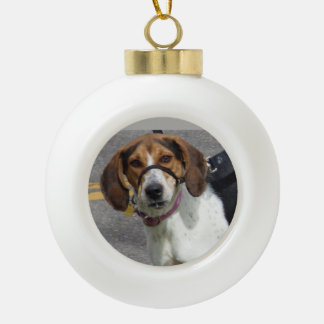 Ornement de chien de beagle