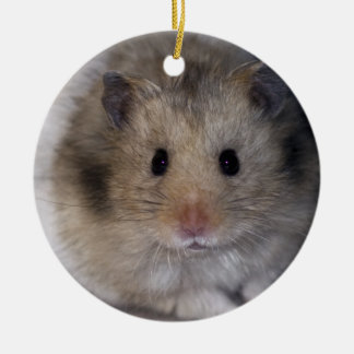 Ornement de Hammie