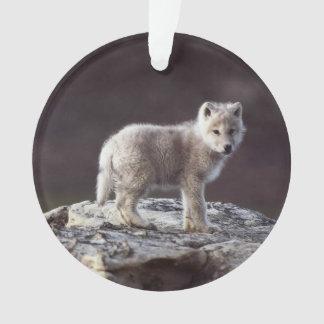 Ornement de loup de bébé