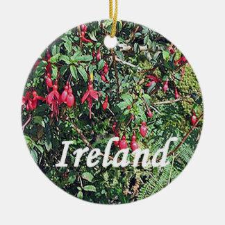 Ornement de Noël de Fushia d'Irlandais, duos de