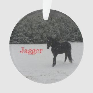 Ornement de Noël de Jagger