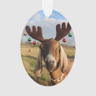 Ornement de Noël de renne de Nubian