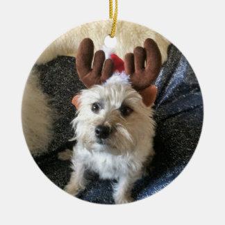 "Ornement de Noël de ""renne"" de Terrier de cairn"