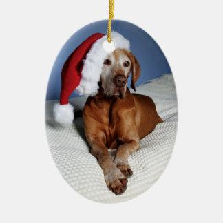 Ornement de Noël (Flynn)