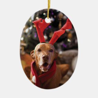 Ornement de Noël (Henry)