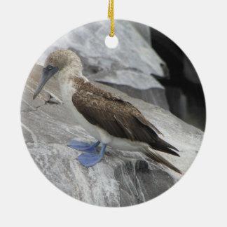 Ornement d'oiseau
